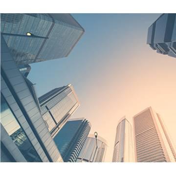External Assets Management